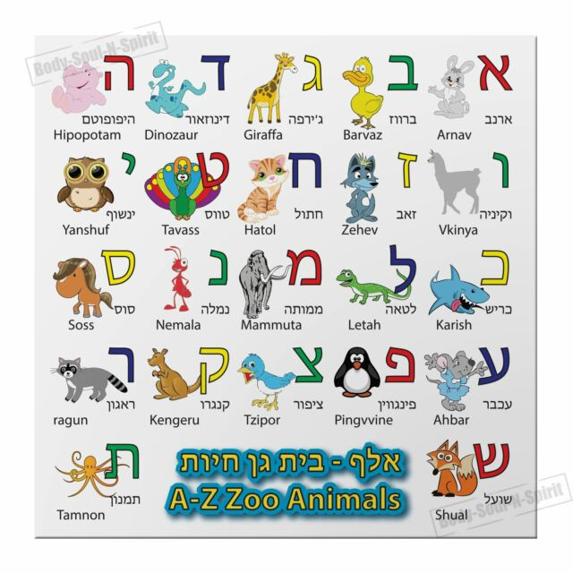 Hebrew Alphabet Magnet Alef Bet Zoo Animals Characters Learn Jewish Kids  A-z ABC