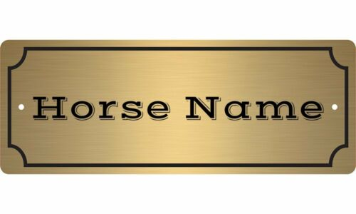 Custom Engraved Equestrian TACK TRUNK Name Plate FREE SHIPPING