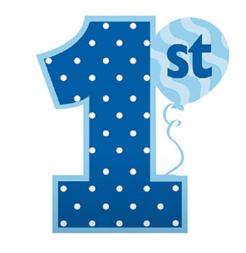 Tableware Balloons /& Decorations FUN AT ONE 1st Birthday Blue BOY Party Range