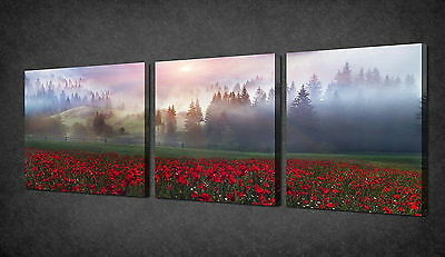 MORNING SUNRAYS POPPIES FIELD 3 PANELS CANVAS PRINT PICTURE READY TO HANG