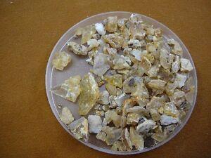 k-5503-16-g-Kauri-tree-Gum-Metaphysical-incense-chips-copal-Amber-NZ-Tane-Mahuta