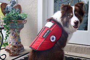 Esa Service Dog Vest Goldenacresdogs Com