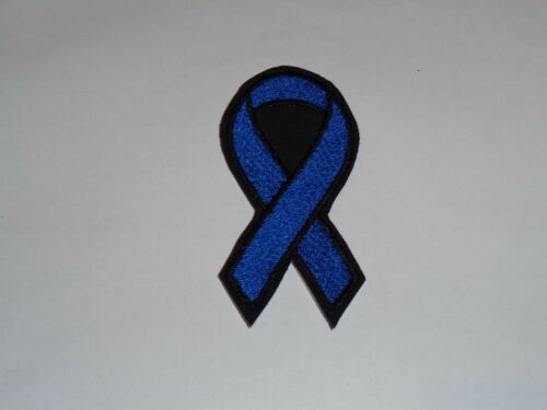 Add a Name! Awareness Ribbon Iron-On Embroidered Applique// Patch Many Colors