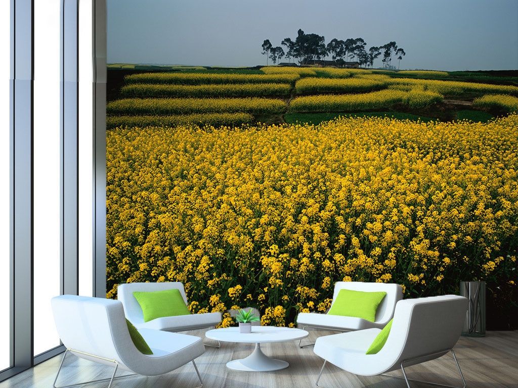 3D Flower Nature Field 566 Wall Paper Wall Print Decal Wall Deco Indoor Mural