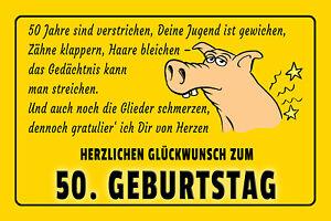 50-Geburtstag-Blechschild-Schild-gewoelbt-Metal-Tin-Sign-20-x-30-cm-W1059