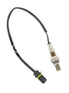 Kerr-Nelson-derecho-Lambda-O2-KNL241-Sensor-De-Oxigeno-Genuino-5-Ano-De-Garantia