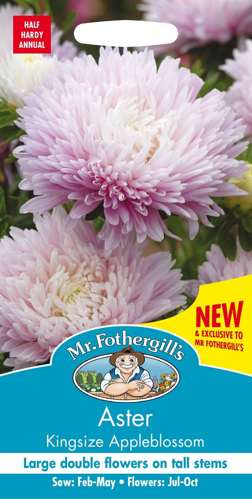 Mr Fothergills - Pictorial - Flower - Aster Kingsize Appleblossom - 150 Seeds