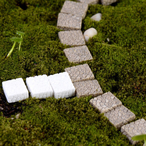 10 Pcs Stone Pavement Miniature Resin Ornaments Fairy Micro Landscape Crafts CN