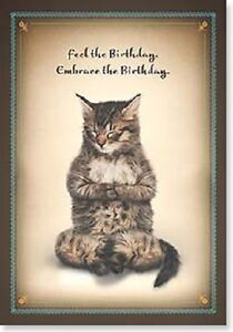 Image Is Loading Feel The Birthday Embrace KITTY CAT