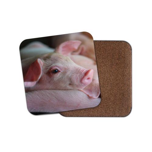 Adorable Rose Porcelet Coaster-Cochon PORC FARM ANIMAL Cool Fun Mignon Cadeau #8822