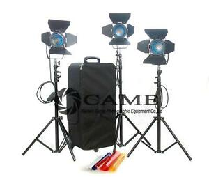 3-300W-Fresnel-Tungsten-Spot-Light-Video-Continuous-Light-Film-Light