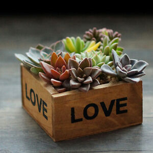 Large-Brown-Wooden-Plant-Pots-Indoor-Outdoor-Garden-Flower-Tall-Planter-Pot-1pcs