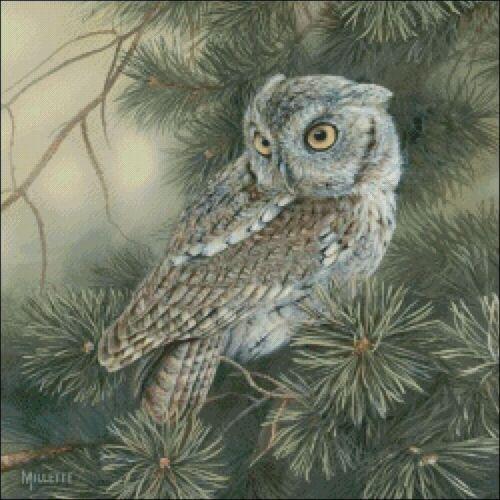 DIY Chart Counted Cross Stitch Patterns Needlework embroidery Screech Owl