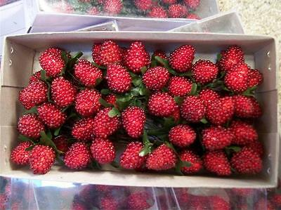 72 NEW in Box Red Beaded Raspberry Berry Pick Faux Fake Food Stage Prop Floral