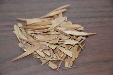 60. Chin bambù gigante semi Moso bambù-Inverno protezione visiva non blocco