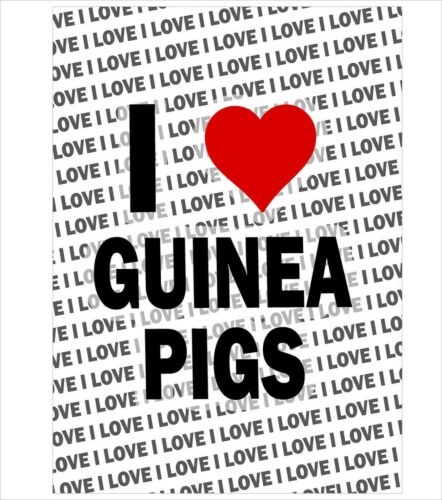 A3 Poster Gift Birthday Stocking Filler I Love Guinea Pig