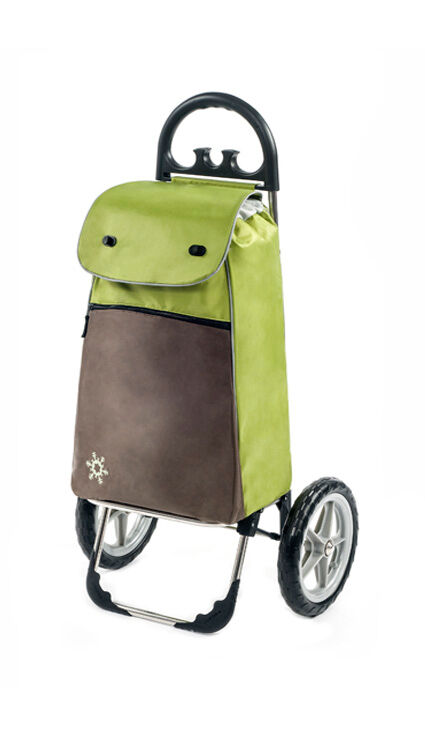 Guida commerciale Comfort Carrello di acquisto Trolley Trolley spesa verde