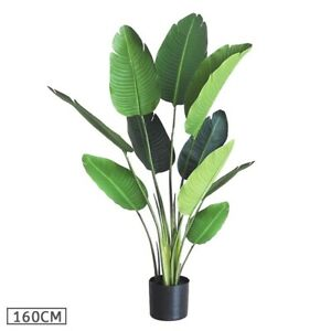 SOGA 160cm Artificial 8 Leaves Bird of Paradise Travelers Palm Fake Tree Plant