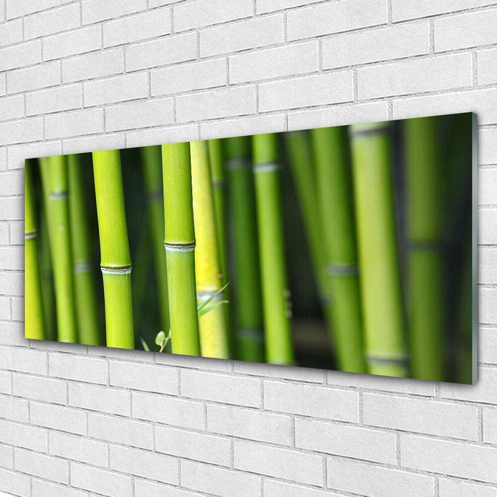 Verre Imprimer Wall Art Image 125x50 Photo Bamboo Nature