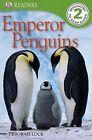 Emperor Penguins by Deborah Lock (Paperback / softback, 2011)