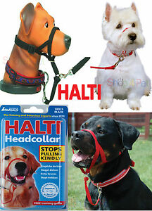 DOG-HEAD-COLLAR-HALTI-STOPS-PULLING-KINDLY-FOR-PET-5-SIZES-INSTANT-CONTROL
