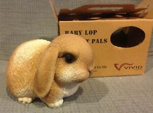 Vivid-Arts-Pet-Pals-Gold-amp-White-Baby-Lop-Bunny-w-Carrier-FREE-US-SHIPPING