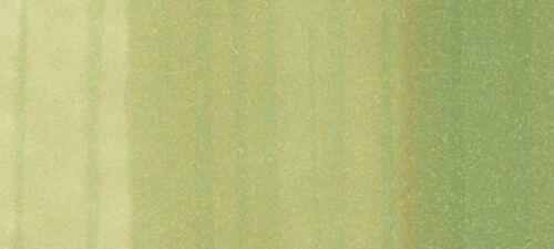 "Color Series/"" green Copic Ciao Marker Pen /""G"