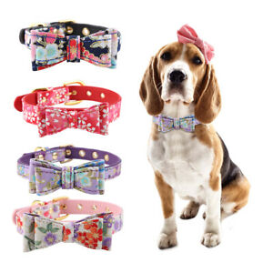Colorful-Leather-Personalized-Engraved-Dog-Collar-Puppy-Cat-Pet-Collars-ID-Tag