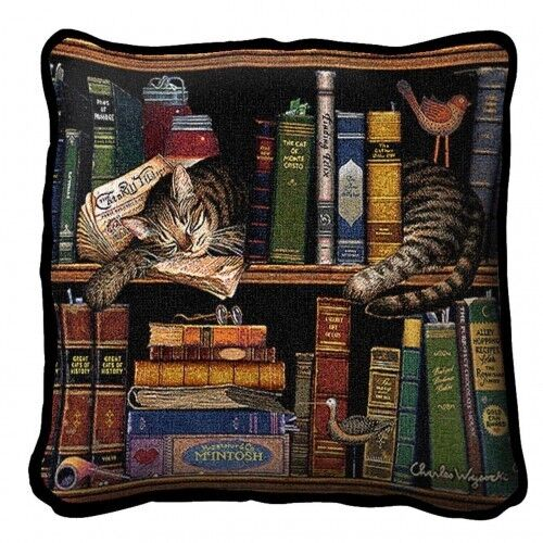 """17/"""" x 17/"""" Pillow Max in the Stacks 2876"""