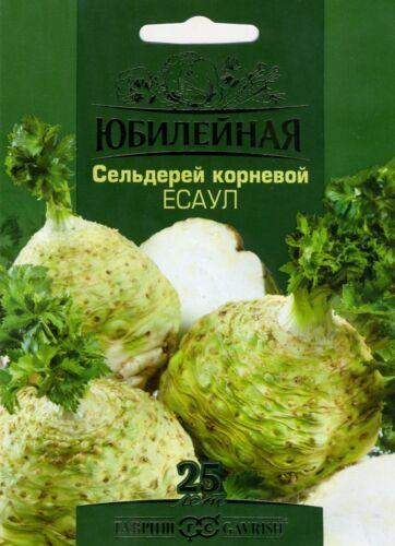 """Céleri /""""esaul/"""" russe de haute qualité Graines"""
