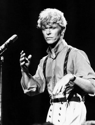 David Bowie  10x 8 UNSIGNED photograph P217 CLEARANCE SALE!!!!