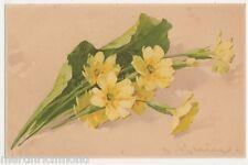 C. Klein, Flowers, Meissner & Buch 1514 Chromo Art Postcard, B443