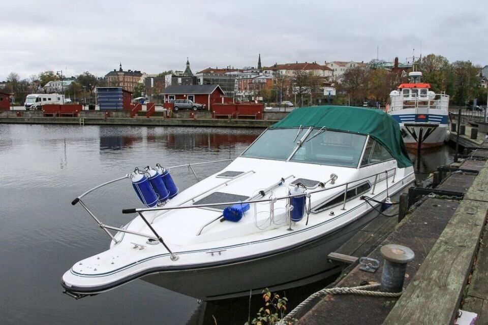 Sea Ray 250 DA, Motorbåd, årg. 1990