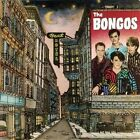 Beat Hotel by The Bongos (CD, Mar-2008, Sony Music Distribution (USA))