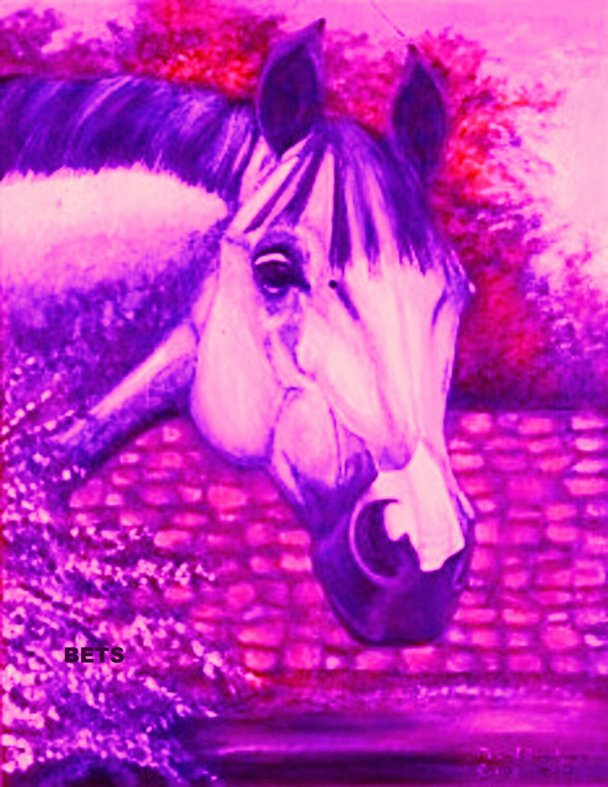 HORSE PRINT Giclee GREY Horse AMERICA by artist  BETS 5 COLORS print size 12 X 16  80% off