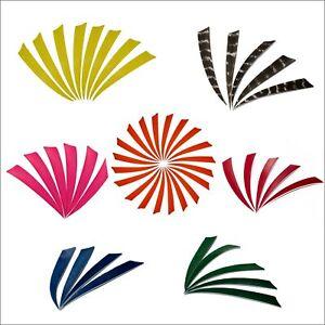 "Details about  /4/"" 5/"" Arrow Fletches Natural Turkey Feather Shield Archery DIY Recurve Bow Arrow"