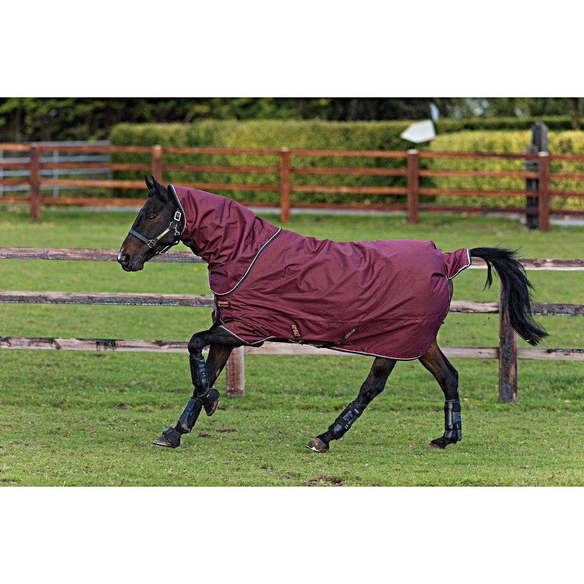Horseware Amigo HERO ACY Plus 250g Disc burgundy  + Halsteil