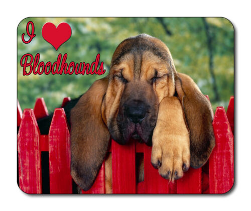 Segugio CANE Tappetino mouse-I Love bloodhounds