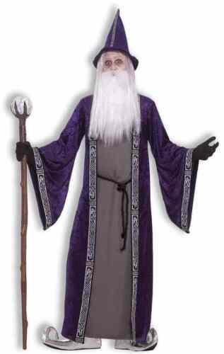 Wizard Merlin Medieval Sorcerer Purple Fancy Dress Up Halloween Adult Costume