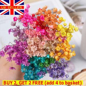 30pcs Mini Daisy Small Star Bouquet Natural Home Decorative Dried Flowers Uk Ebay