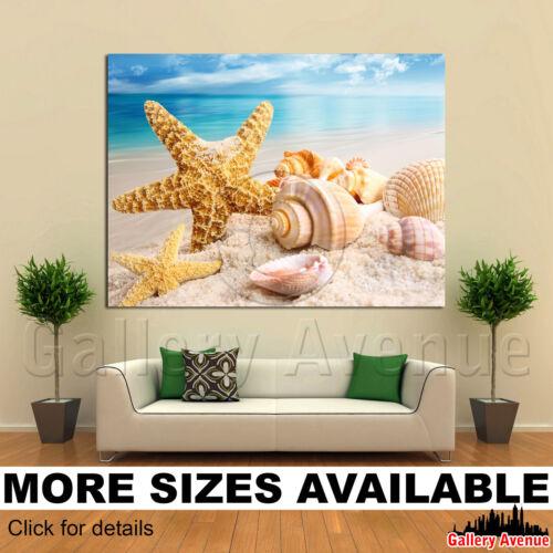 Starfish Shells Beach Scene M002 4.3 A Wall Art Canvas Picture Print