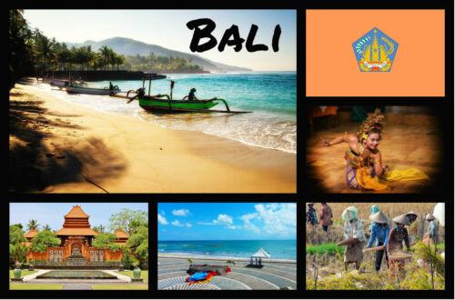 Souvenir Neuheit Kühlschrank-magnet Bali Indonesien