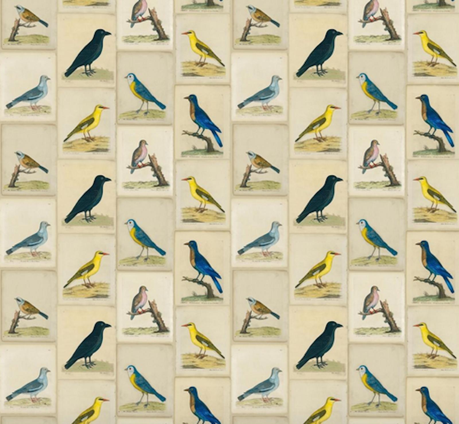 DESIGNERS GUILD FABRIC JOHN DERION BIRD COLLAGE PARCHMENT FJD6005 01 COTTON