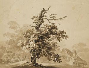 Alter Baum bei einem Gehöft, 19.Jhd., Lavierte Pinselzeichnung
