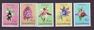 Luxemburg-Nr-914-18-Caritas-Geschuetzte-Pflanzen