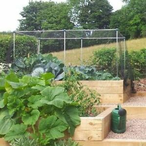 Vegetable Fruit Cages Erected Height 1.2m Different Choice Of Netting & Size