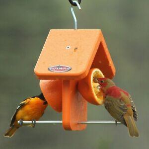 Kettle-Moraine-Recycled-Plastic-Single-Oriole-Orange-Fruit-Bird-Feeder-8334