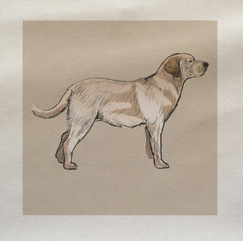Dog Labrador Golden Lab Fabric Panel Make A Cushion Upholstery Craft