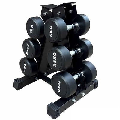 vertical dumbbell weights rack set 6 hand exercise fitness
