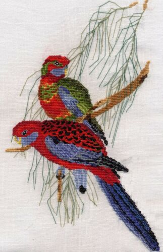 Crimson Rosellas counted cross stitch kit or chart 14s aida